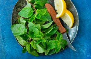 Peppermint  on plate with knife and lemon wedges