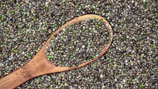 hemp seed oil benefits health
