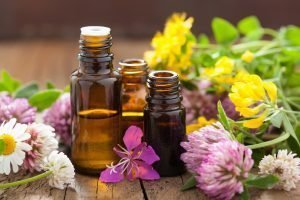 Essential Oils And mMedical Flowers Herbs