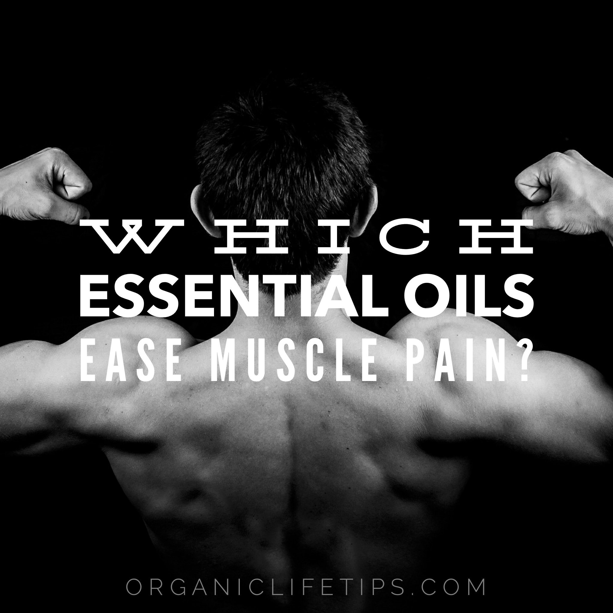 Eseential Oils For Muscle Pain